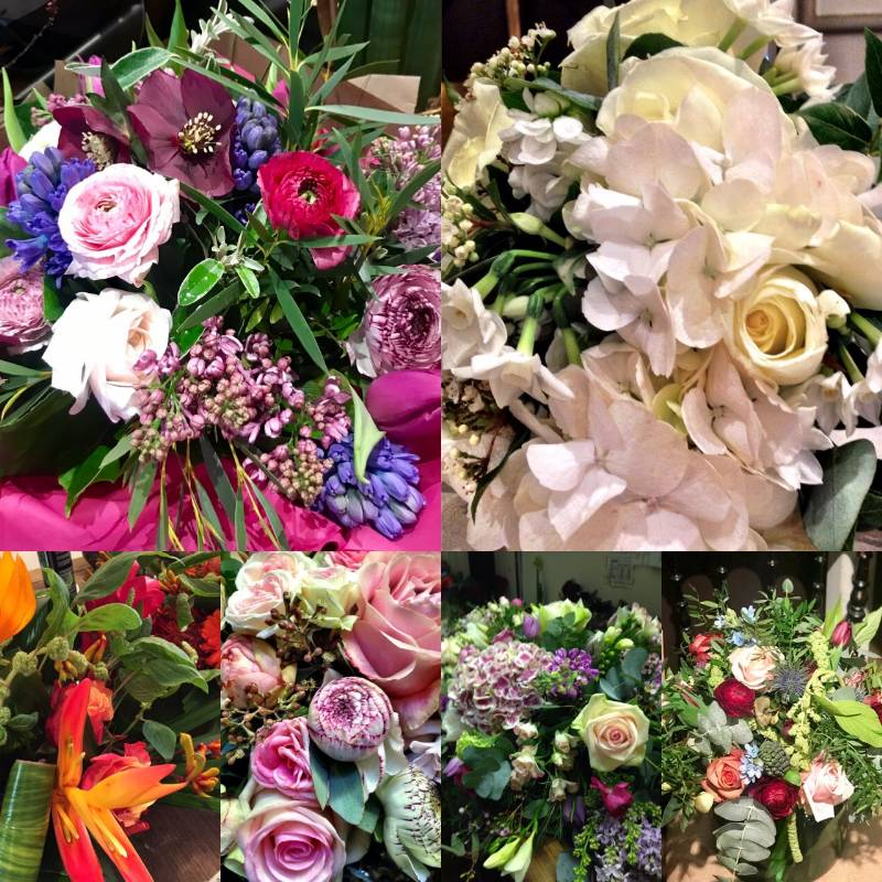 12 Months Of Flowers
