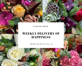WEEKLY DELIVERY OF HAPPINESS